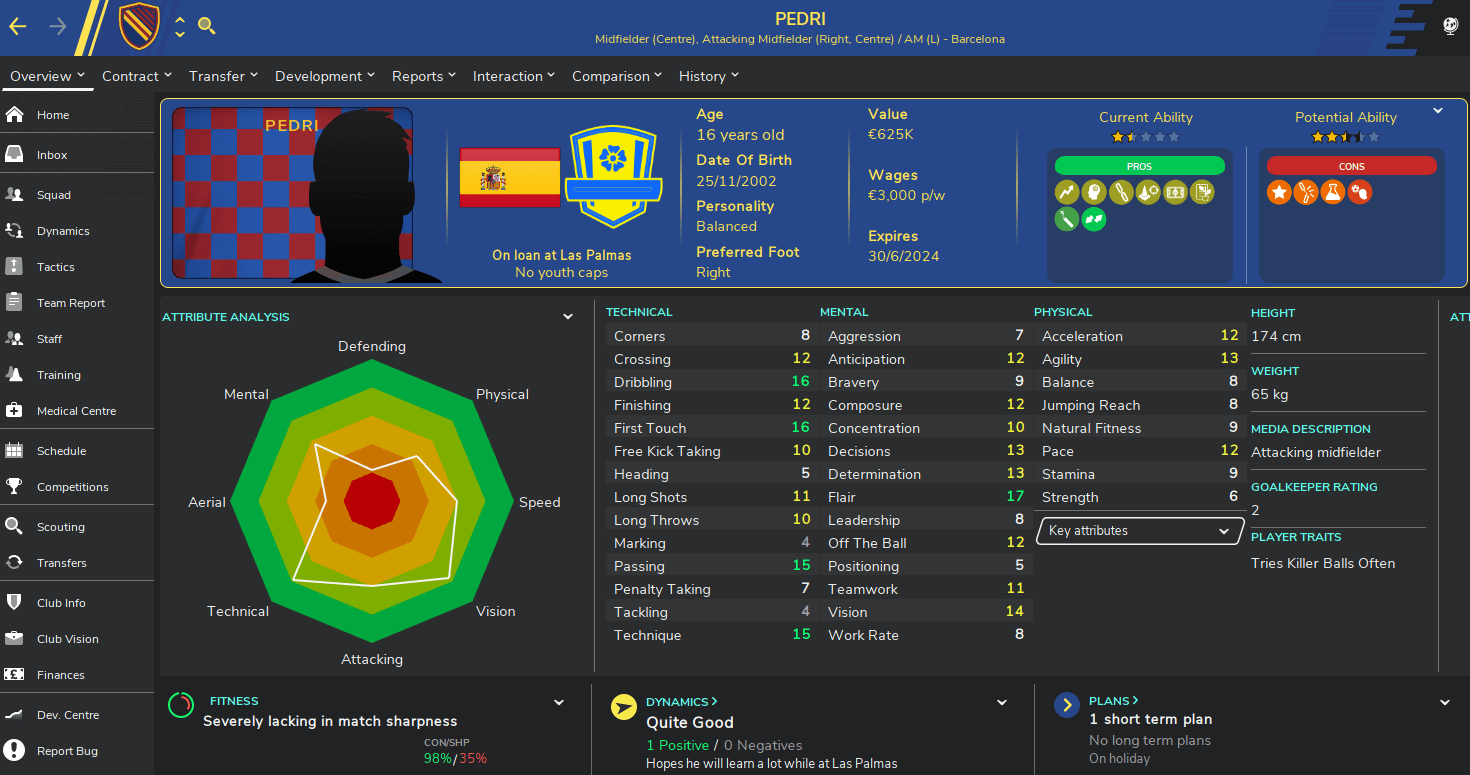 Football Manager 2020 tcs skin player overview